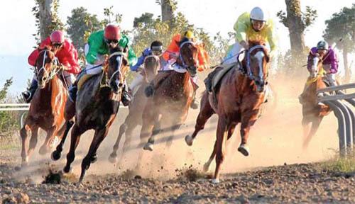 برگزاری دومین دوره مسابقات اسب سواری شهرستان بستک به میزبانی هرنگ