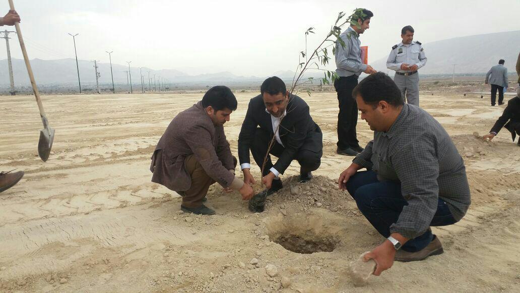 کاشت ۲۰۰ نهال به مناسبت روز درختکاری در بستک+عکس