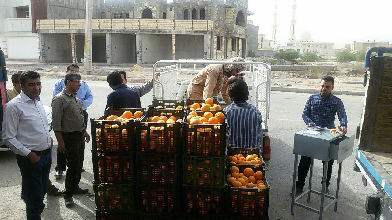 توزیع میوه شب عید به قیمت مصوب در بستک آغاز شد